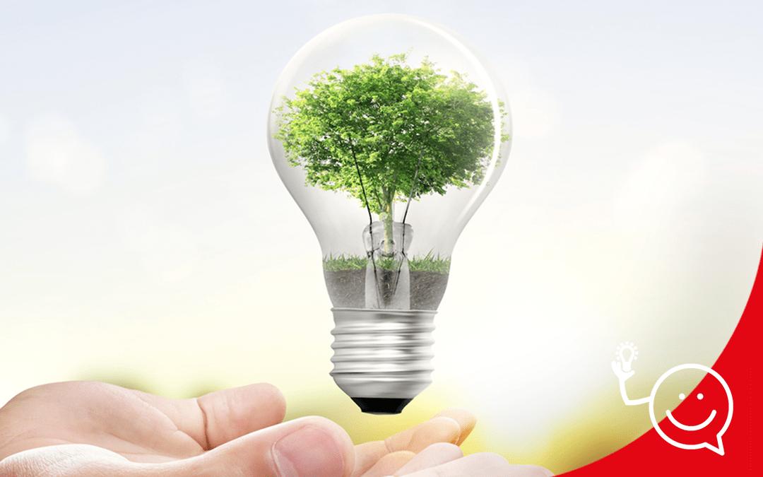 Accions diaries que pots fer per estalviar energia a casa teva